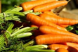 legumes-potager